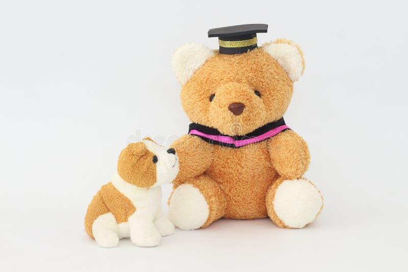 Ein Braunbär, der eine Staffelungskappe und eine bräunliche weiße Hundepuppe trägt lizenzfreies stockbild