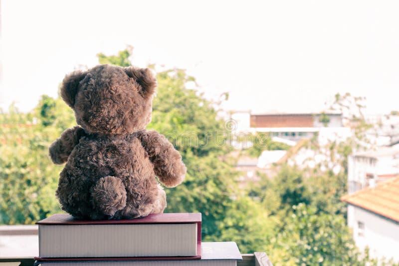 Ein brauner Teddybär, der auf Stapelbuch sitzt stockfoto