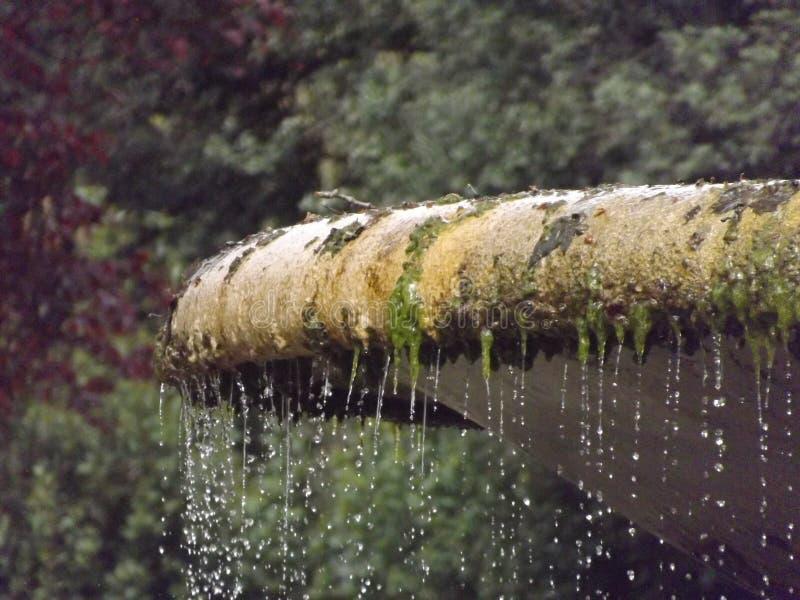 Ein Brunnen im Landhaus Borghese lizenzfreie stockfotografie