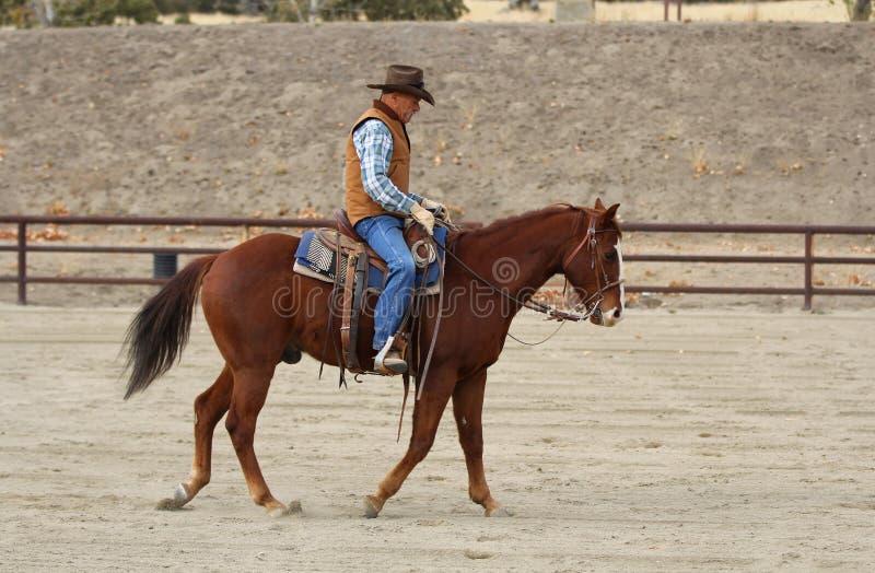Ein Cowboy, der sein Pferd aufwärmt stockbild