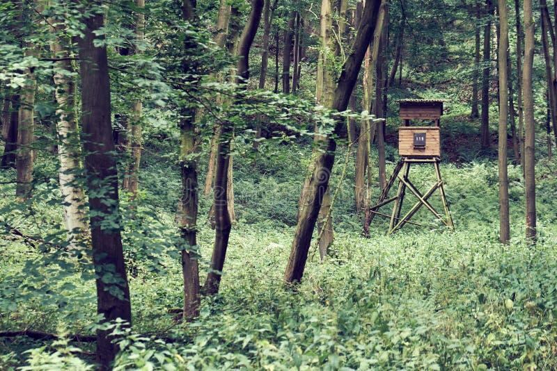 Ein deutscher Försterhochstand tief im Wald umgeben durch Bäume im Sommer lizenzfreie stockfotos