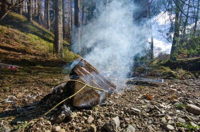 Ein dichter weißer Rauch von einem Lagerfeuer in einem Frühlingswald lizenzfreies stockfoto
