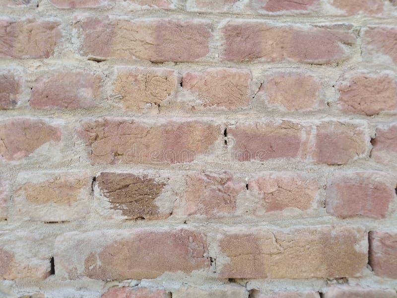 Ein einfaches Wandfoto stockbilder
