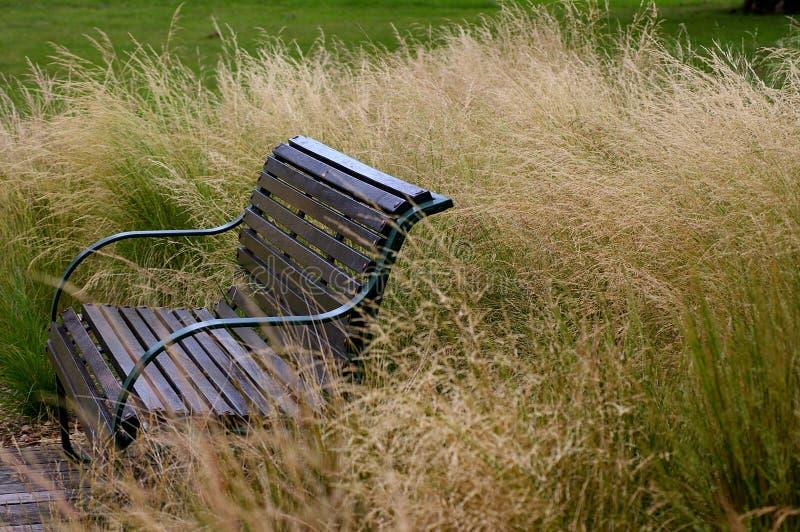 Ein einsamer Sitz lizenzfreie stockfotos
