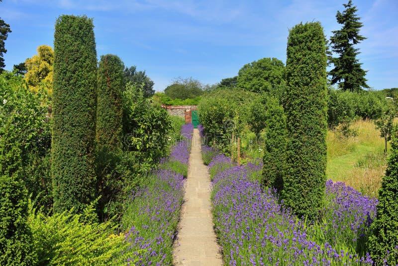 Ein englischer landschaftlich gestalteter Garten lizenzfreies stockfoto