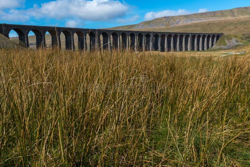 Ein entfernter Schuss durch das Wiesengras des Kehren majestätischen Ribblehead-Viadukts steht über dem Ribble-Tal, Yorkshire hoc lizenzfreie stockbilder