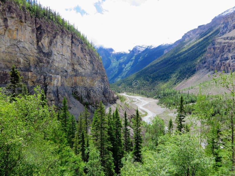 Ein episches Naturbild tief in den Wäldern des Kanadiers Rocky Mountains lizenzfreie stockfotografie