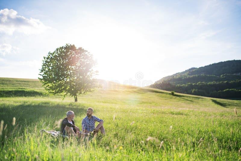 Ein erwachsener Hippie-Sohn mit dem älteren Vater, der auf dem Gras in der sonnigen Natur sitzt lizenzfreie stockbilder