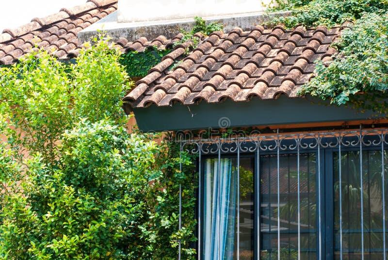 Ein europian Arthaus der Weinlese mit rotem Dach und Grünpflanze herein stockfotografie