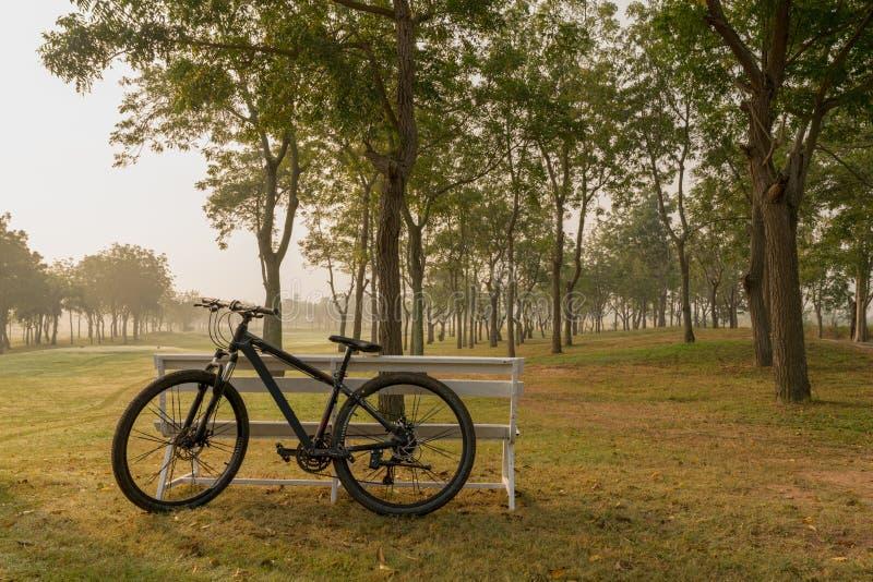 Ein Fahrrad mit der weißen Bank, die Golfgericht als Hintergrund hat lizenzfreie stockbilder