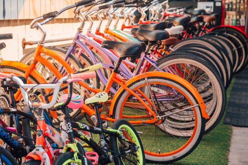 Ein Fahrrad zu reiten ist der beste Strandtransport stockbild