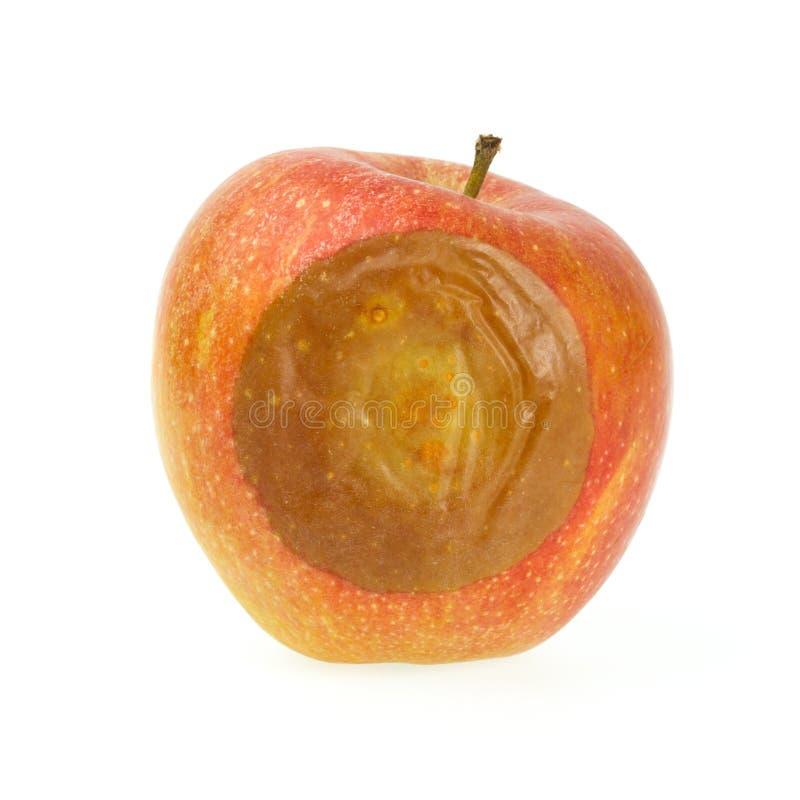 Download Ein falscher roter Apfel stockfoto. Bild von contaminate - 26358096