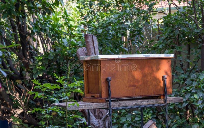 Ein Fangbienenstock, zum von schwärmenden Bienenvölkern anzuziehen lizenzfreies stockbild