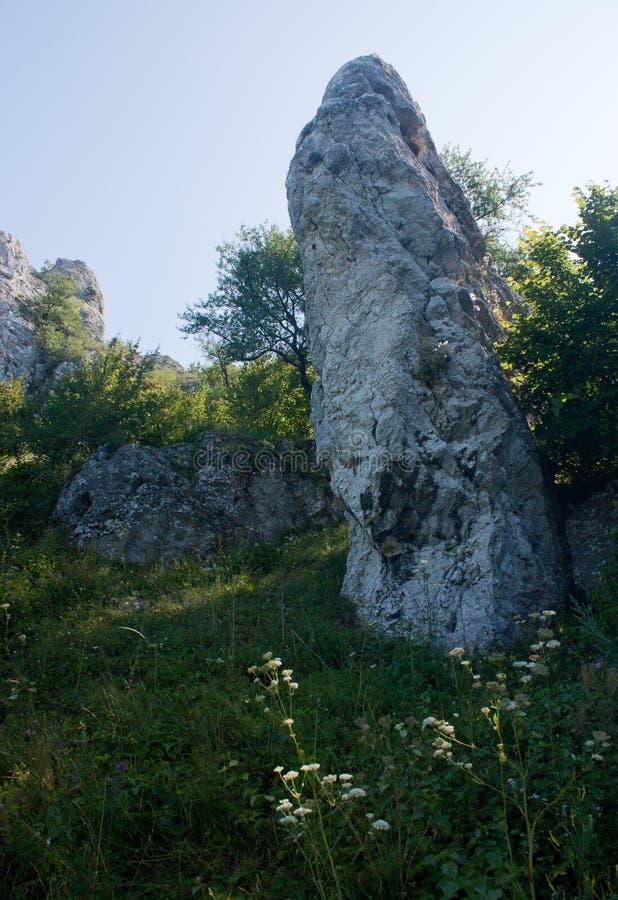 Ein Felsen mitten in einer Wiese in Palava in der Tschechischen Republik stockbilder
