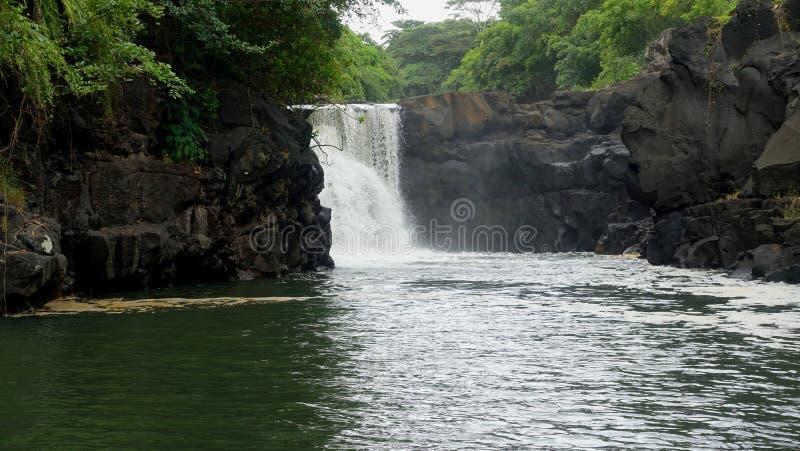 Ein felsiger, tropischer Dschungelwasserfall auf Mauritius stockfotografie