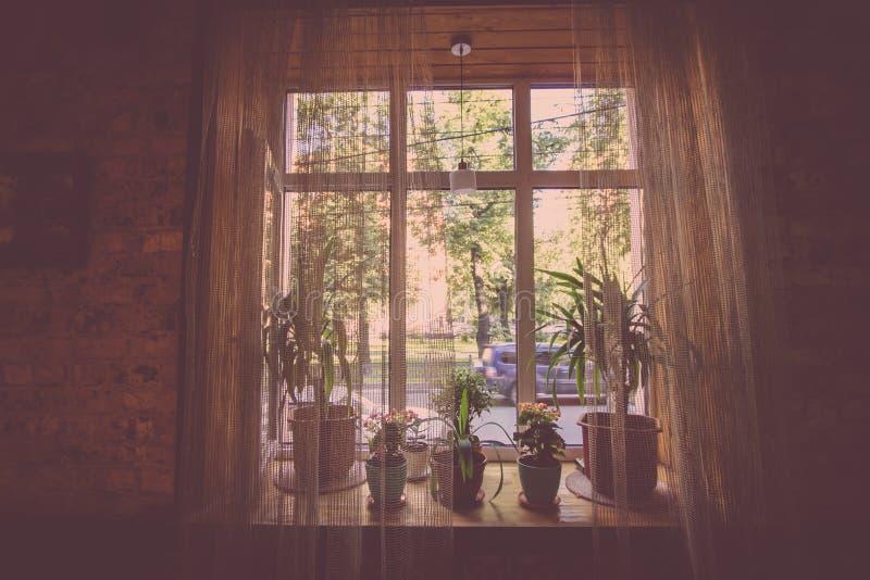 Ein Fenster mit Vorhängen von einem der Stadtcafés im Stil einer Aufschrift lizenzfreie stockfotos