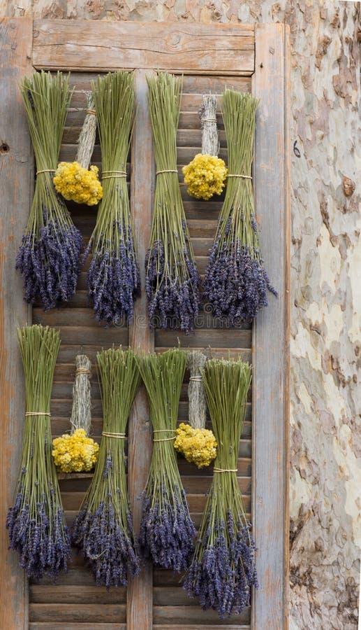 Ein Fensterladen mit getrocknetem Lavendel und Straw Flowers stockfotos