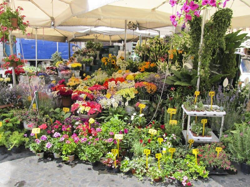 Ein Florist Im Freien Lizenzfreie Stockfotos