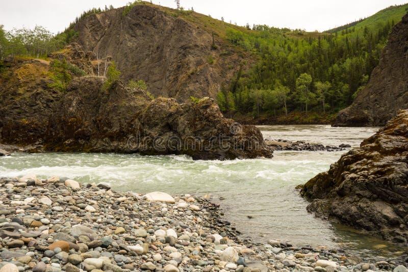 Ein Fluss, der durch eine Schlucht läuft lizenzfreies stockbild