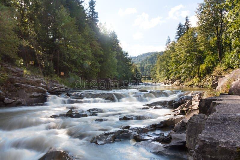 Ein Fluss im Wald lizenzfreies stockfoto