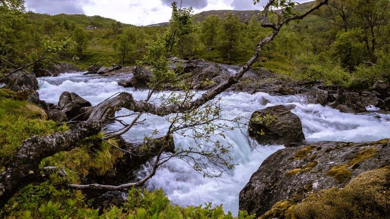 Ein Fluss unter Felsen und Wäldern stockbild