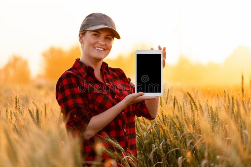 Ein Frauenlandwirt hält eine Tablette mit leerem Bildschirm stockfotos