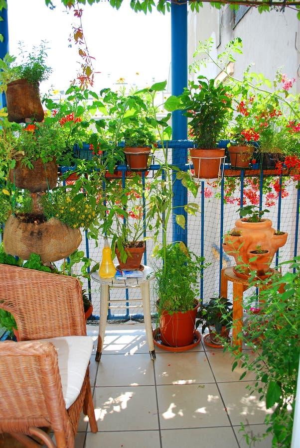Ein Garten auf Balkon stockbilder