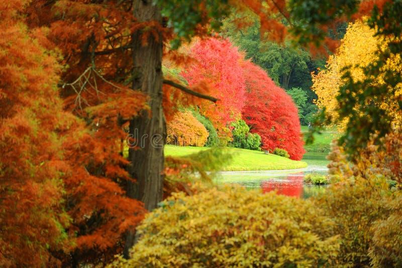 Ein Garten im Herbst stockfotos