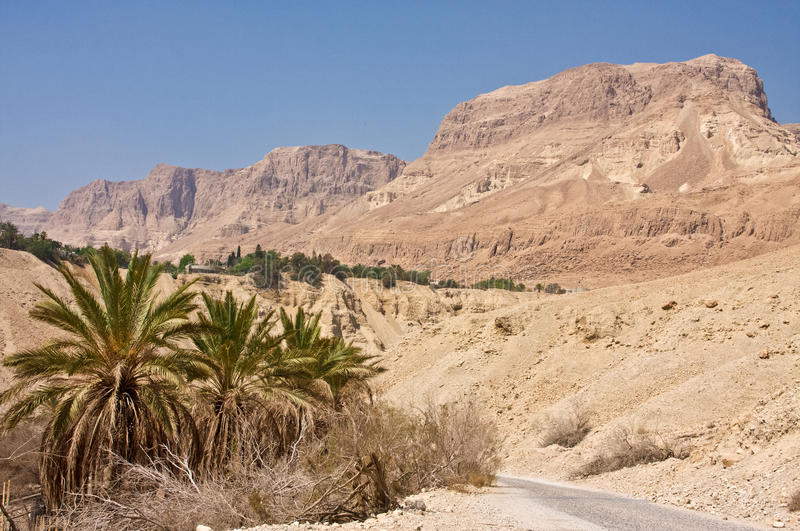Download Ein Gedi Nature Reserve stock image. Image of middle - 15870625