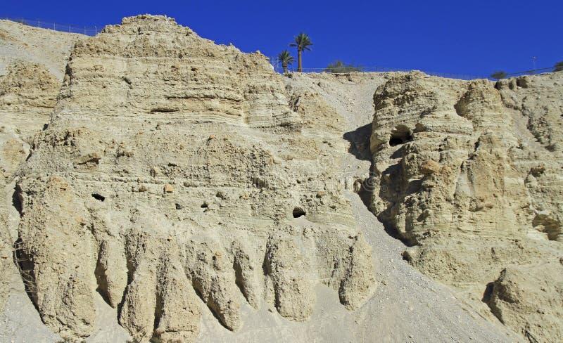 Ein Gedi - réserve naturelle et parc national photographie stock libre de droits