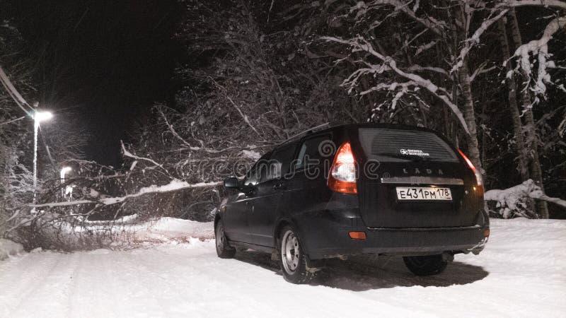 Ein gefallener Baum, der die schneebedeckte Winterstraße blockiert stockbild