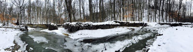 Ein gefrorenes Panorama eines Nebenflusses in Cleveland Metroparks - dem Parma, Ohio stockbilder