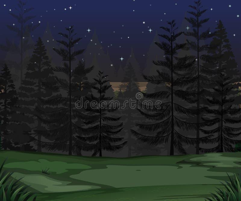 Ein Geheimnis Forest Dark Night lizenzfreie abbildung