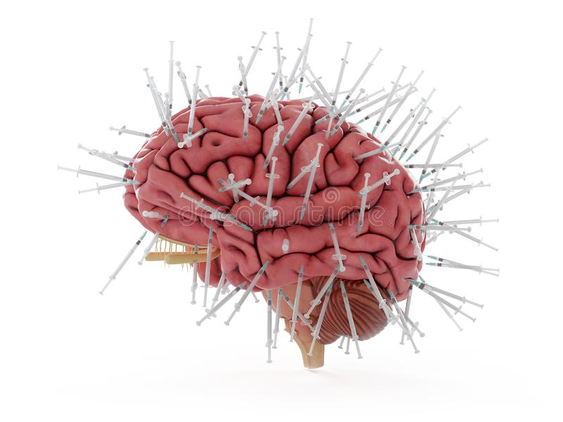 Ein Gehirn stock abbildung