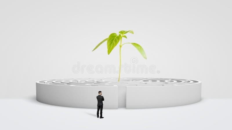 Ein Geschäftsmann, der vor einem weißen runden Labyrinth mit einer neuen Grünpflanze wächst von seiner Mitte steht lizenzfreie stockfotografie