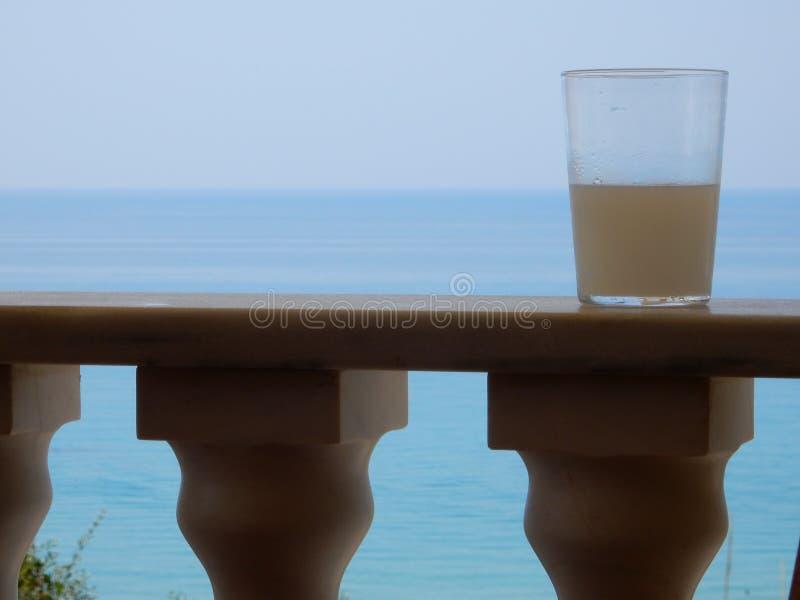 Ein Glas Saft lizenzfreies stockbild