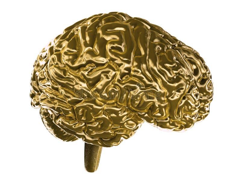 Ein goldenes Gehirn lizenzfreie abbildung