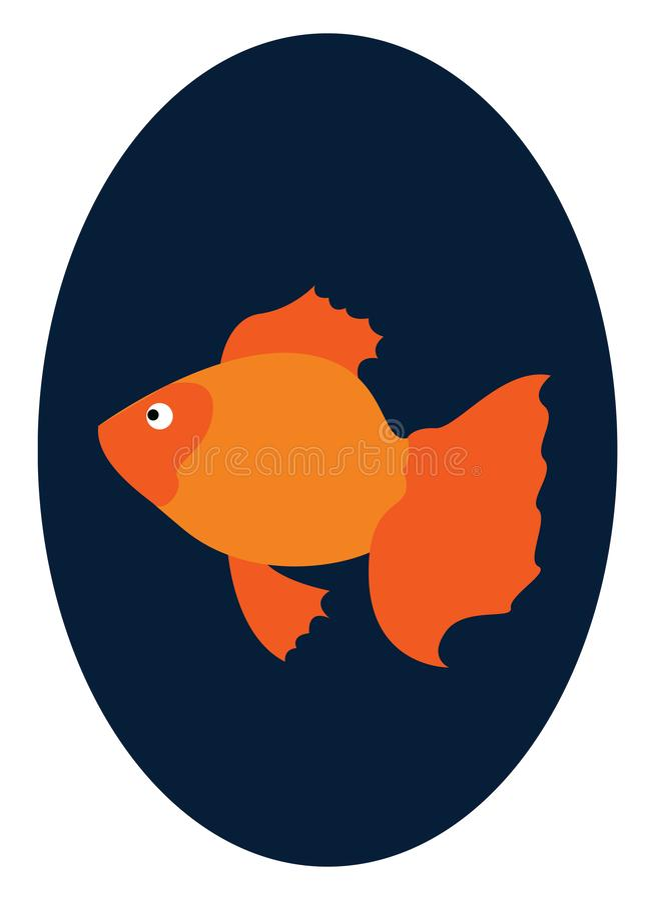 Ein Goldfisch, der in der Fischschale schwimmt, sieht aus wie ein schöner Vektor oder eine farbige Abbildung lizenzfreie abbildung