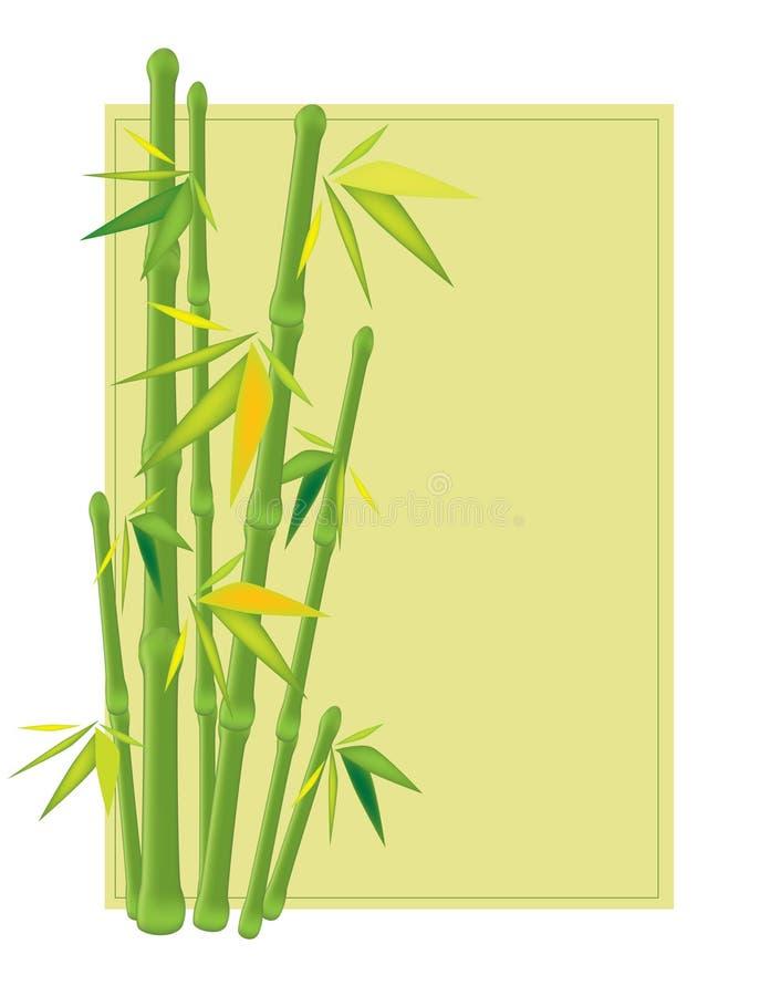 Ein grüner Bambus lizenzfreie abbildung