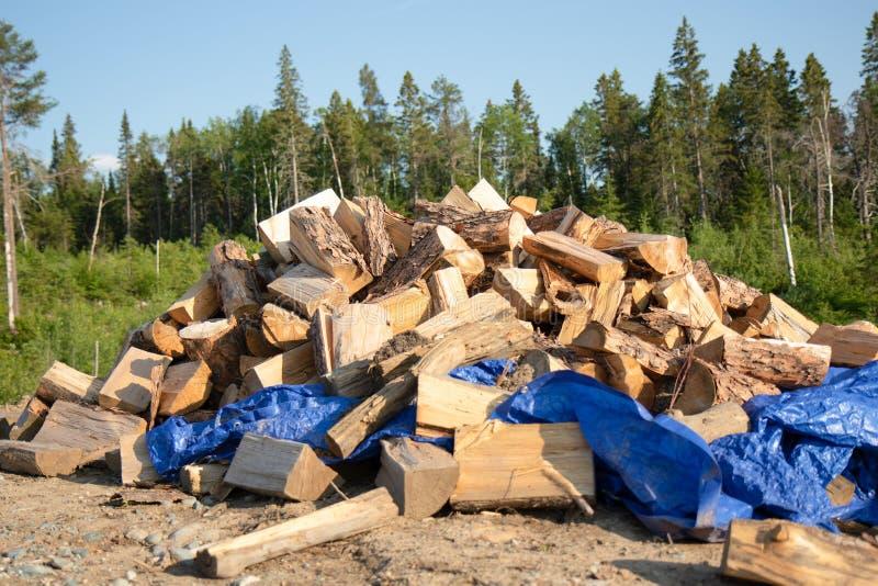 Ein großer Stapel des Holzes im Sommer lizenzfreies stockbild