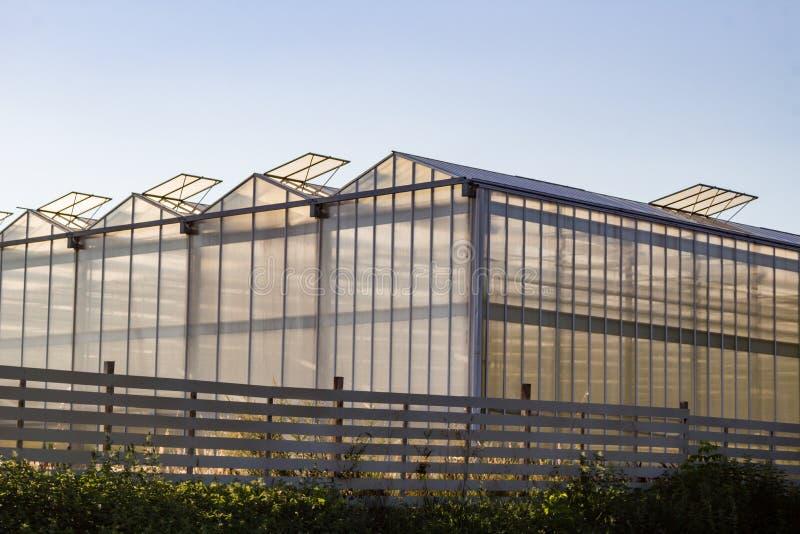 Ein großes Gewächshaus für wachsende Blumen lizenzfreies stockbild