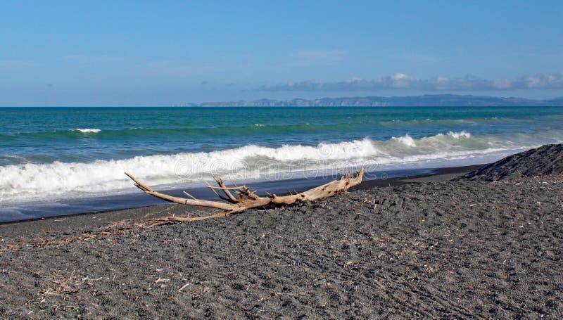 Ein großes Stück Treibholz auf einem einsamen Strand in Neuseeland stockbild