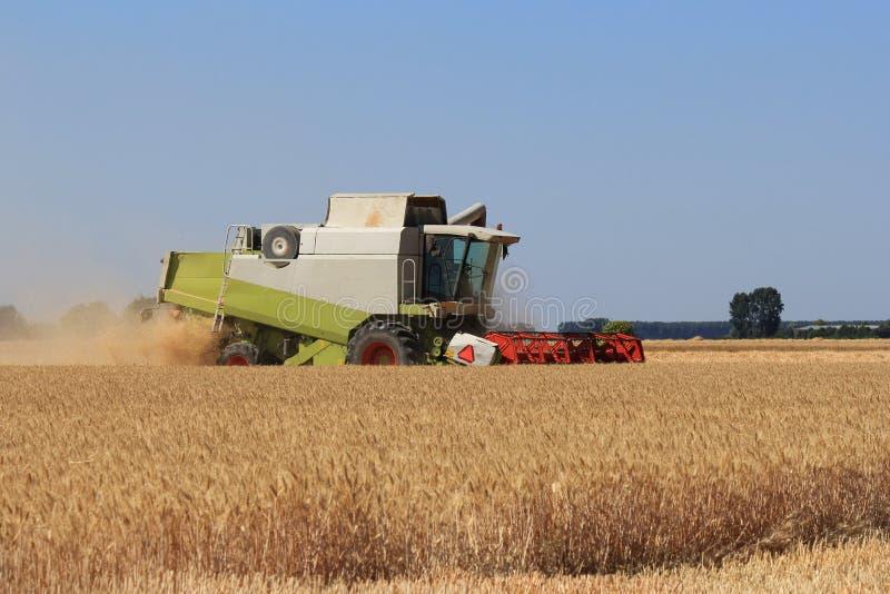Ein großer Mähdrescher erntet Weizen in der niederländischen Landschaft in Holland stockfotografie