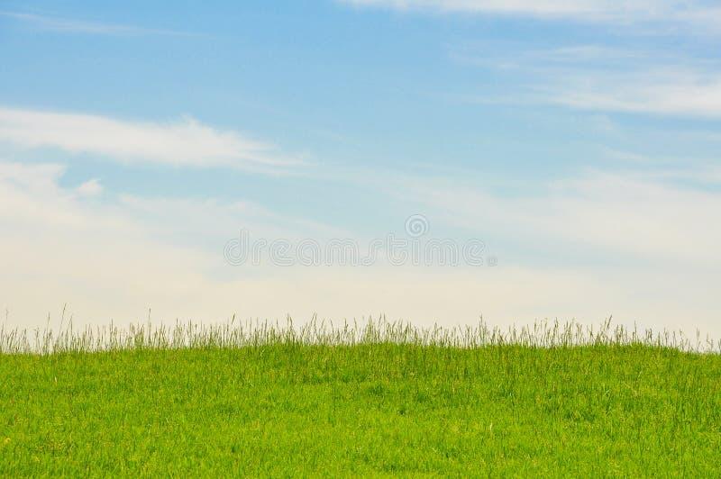 Ein gro?er und sauberer Rasen durch Himmel stockfotografie