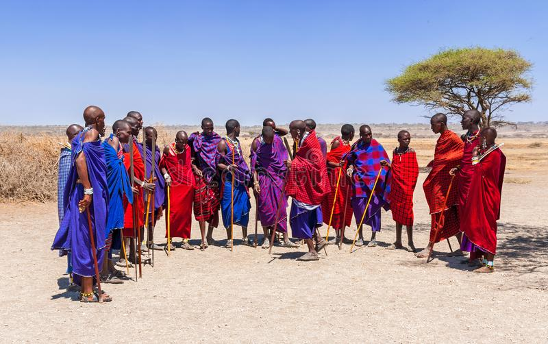 Ein groupd von Massai-Männern in einem Massai-Dorf im Nationalpark Serengeti stockbilder