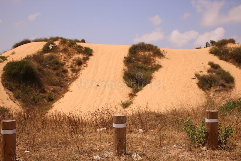 Ein Hügel in einer Düne in einem Wüstengebiet stockfotos