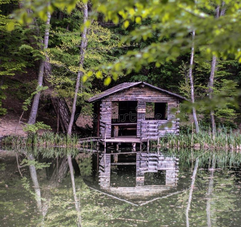 Ein Haus im Wald, ein Film, Naturgrün, ein See mit einem Haus, ein Seehaus, ein Haus im Wald, eine Hütte, ein hölzernes hous lizenzfreies stockbild