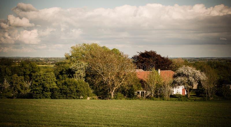 Ein Haus zwischen Bäumen lizenzfreies stockbild