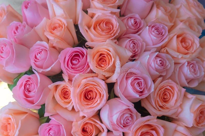 Ein heller Blumenstrauß von korallenroten und rosa Rosen Beschaffenheit Hintergrund Mutter`s Tag Alles Gute zum Geburtstagkonzept lizenzfreie stockbilder