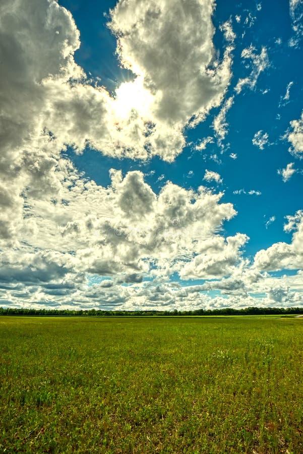 Ein heller Sonnenschein mit geschwollenen weißen Wolken über einem großen Feld lizenzfreie stockbilder